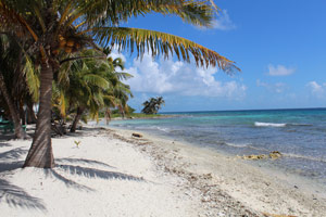 North View Laughing Bird Caye