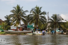 Belize Adventures, Tours and Excursions, Scuba Diving to Jungle