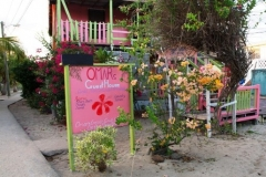 Omar's Guest House - On the Sidewalk