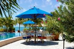 Palm Tree Infinity Pool - Swim, Dine, Relax